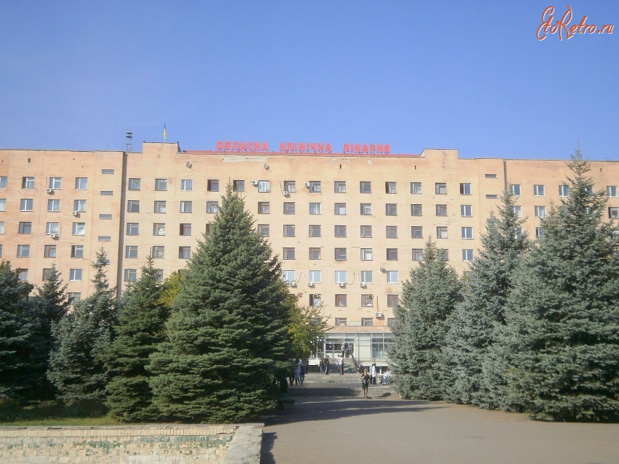 Ветеринарные клиники воронежа у петровского