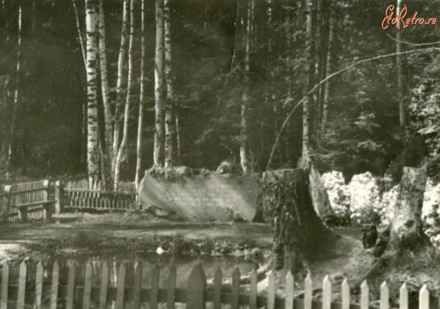 На херсонщине разбили памятник шевченко фото собак породы