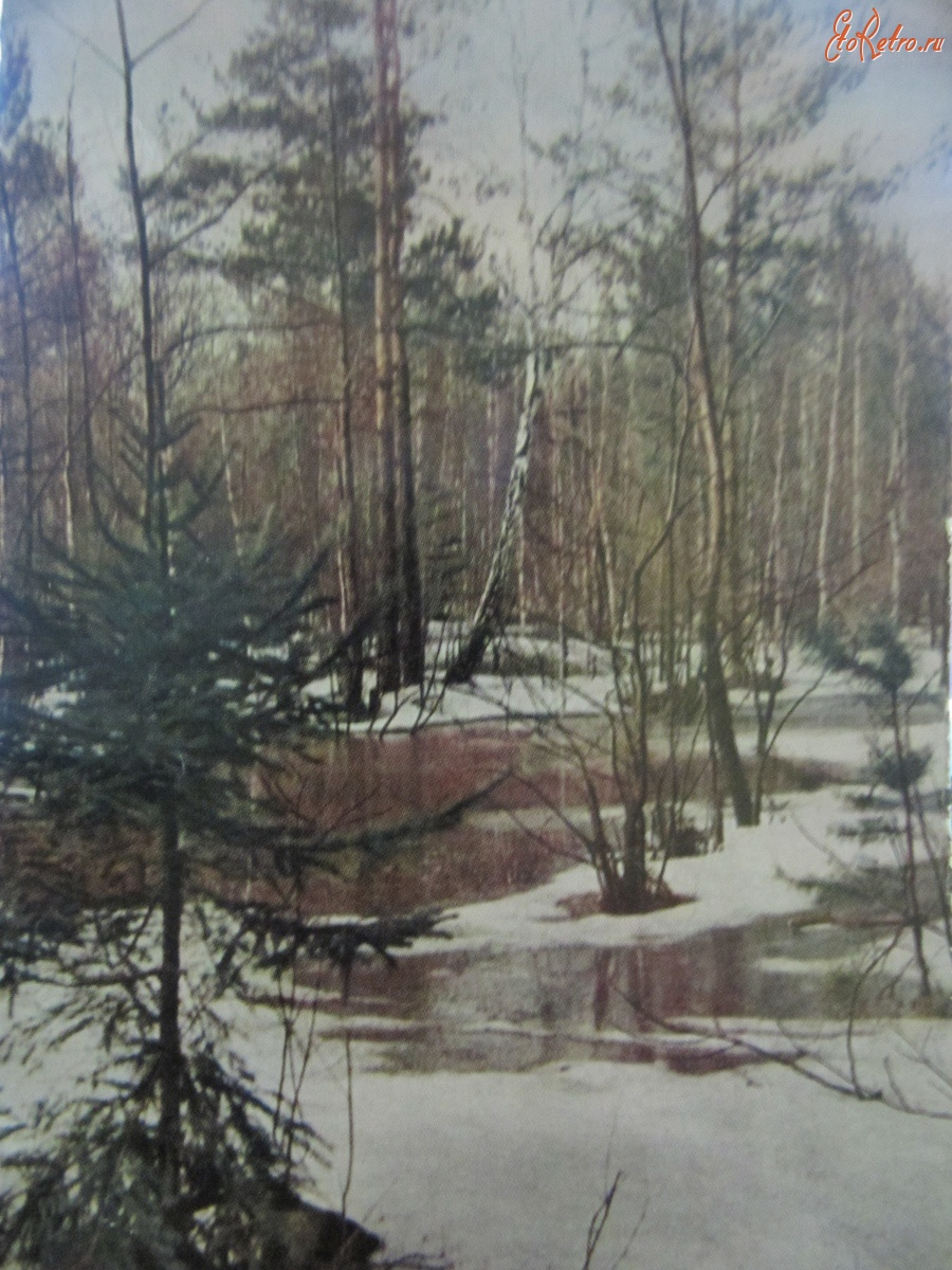 Старые картинки природы