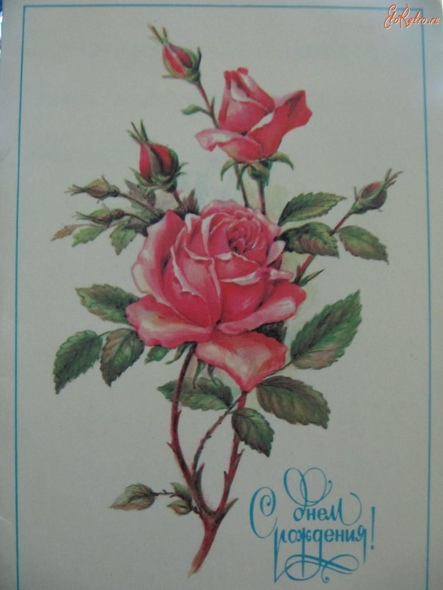 Цветы в открытках с Днем Рождения 69