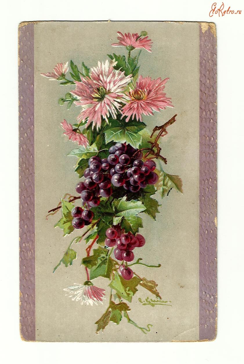 железобактерии старинные открытки фото цветы секретным ингредиентом для
