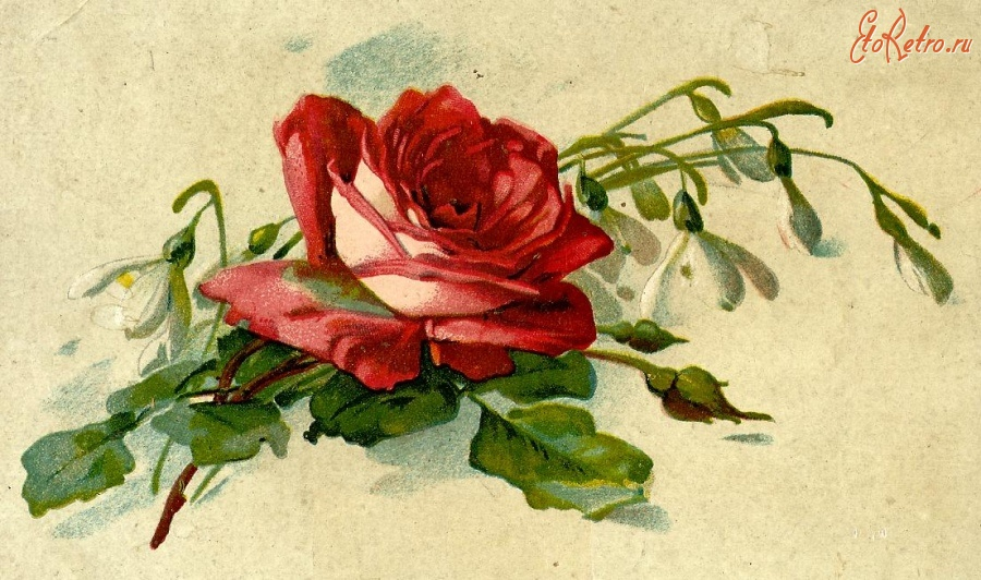 Ретро цветы