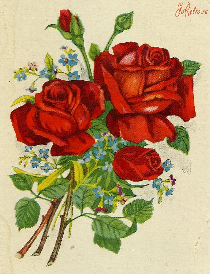 Цветы рисунки картинки открытки с