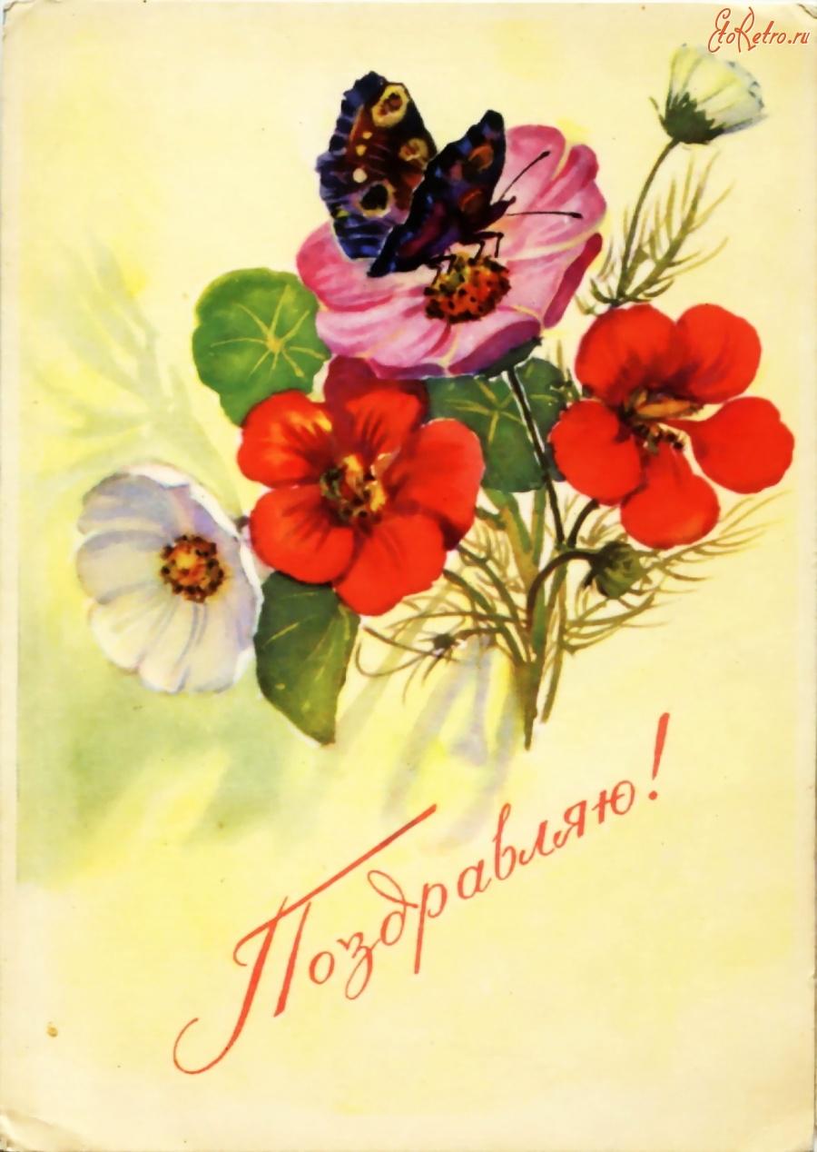 Новые открытки с цветами