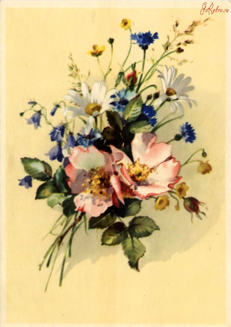 Юбилеем, старые открытки цветов