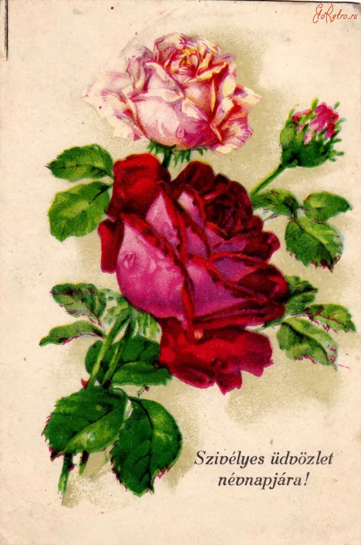 Поздравительные открытки на венгерском, кореянке открытка