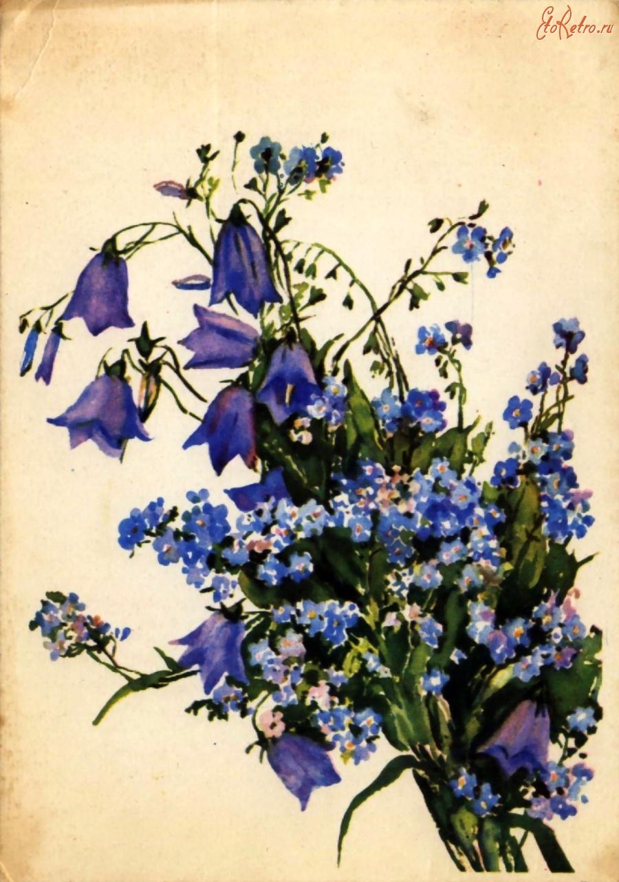 Колокольчики цветы открытки