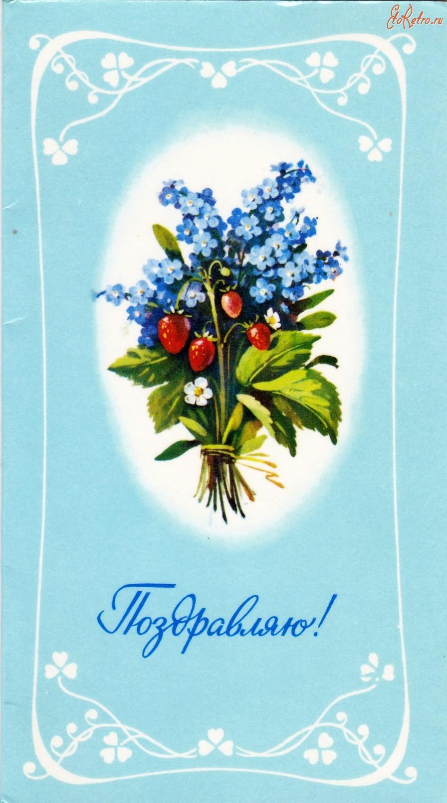 Советские открытки незабудки, овощи картинки