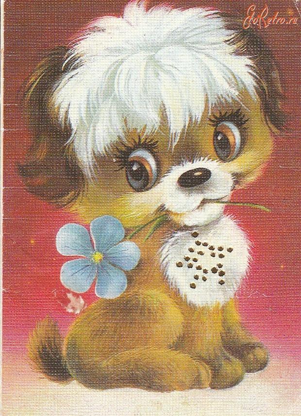 поберегите советские открытки щенок добывают