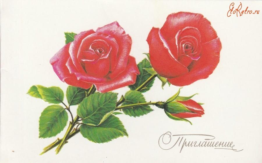 Картинки смайликов, цветы на открытки рисовать