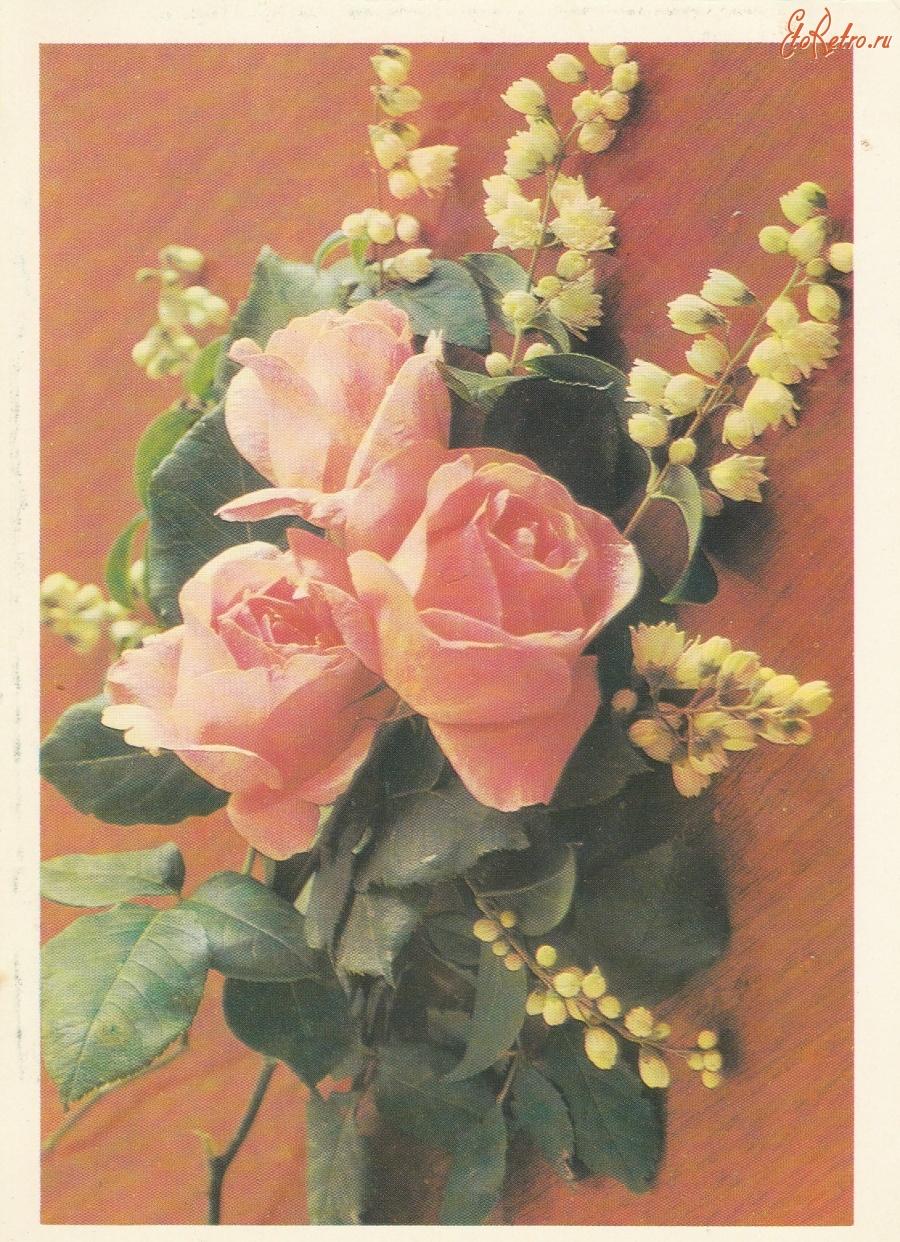 советские картинки с розами будет пусть успех