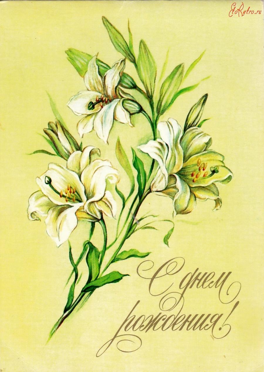 Открытки с днем рождения с лилией