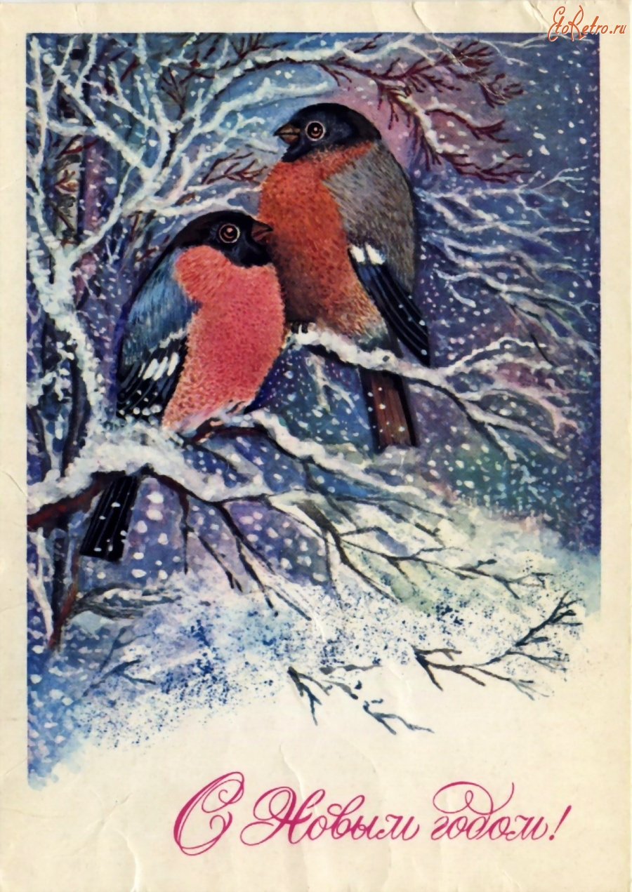 простой открытки с новым годом 1980 с птицами лечение