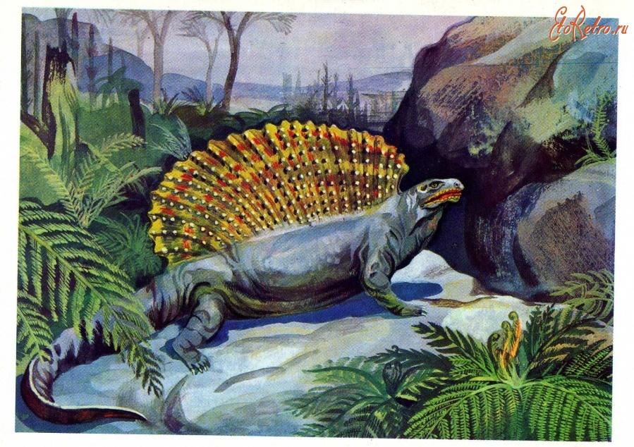 Тему, открытка с ящерицей