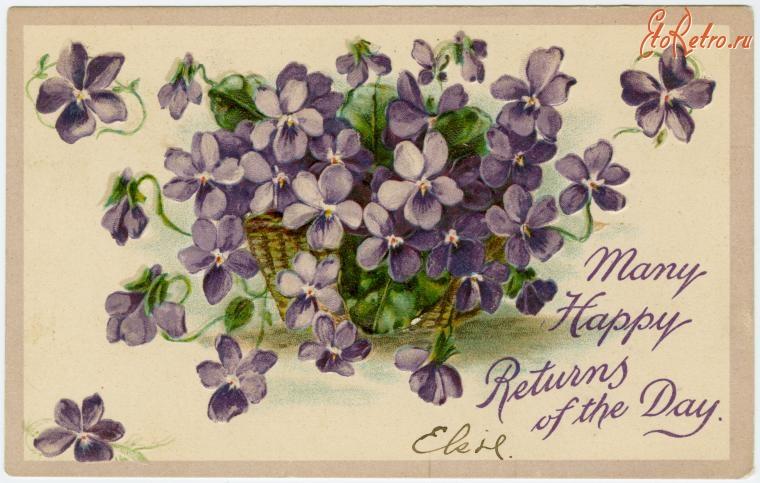 Картинки для, открытки фиалки с днем рождения