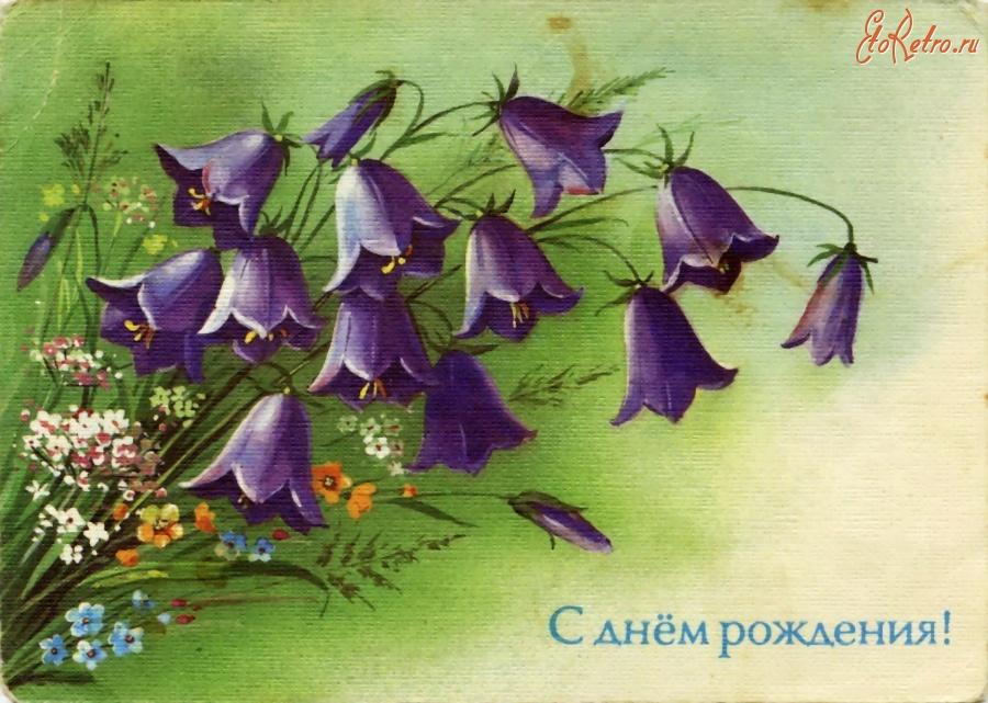 Колокольчики цветы открытки 68