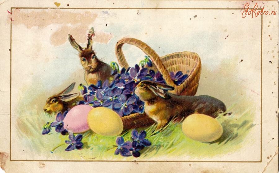 Прикольные картинки, когда появились первые пасхальные открытки