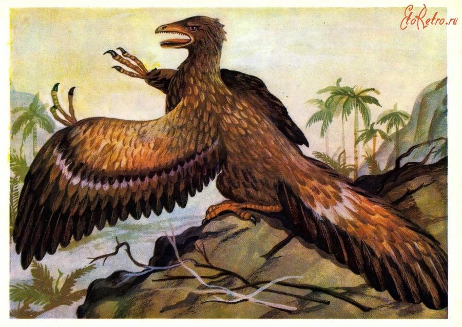 картинка птицы археоптерикс качели украсят ваш