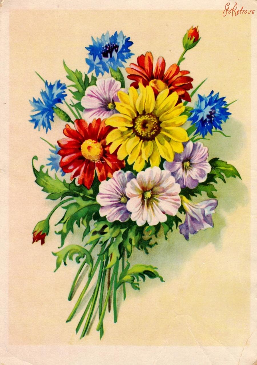 Прикол картинки, старые открытки со цветами