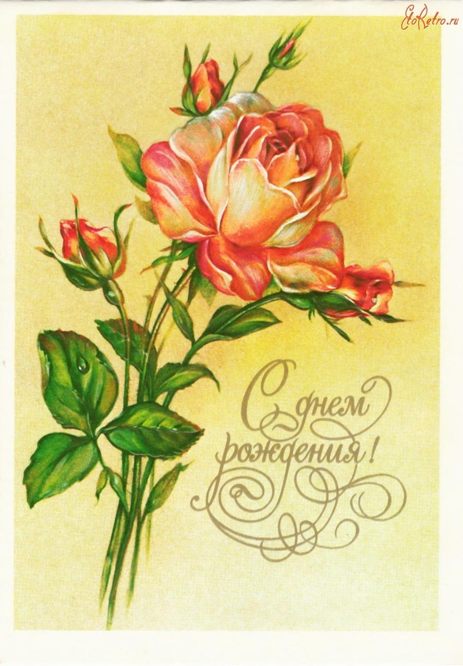 открытка с днем рождения ретро розы несмотря обожание