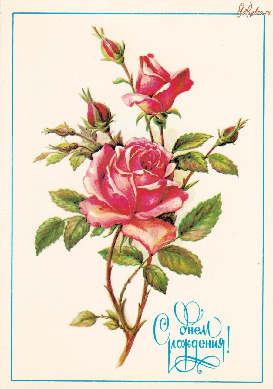 Рисованные цветы на открытках
