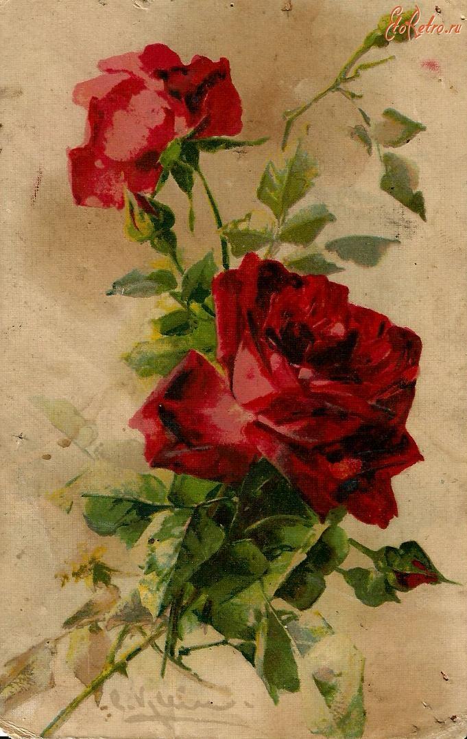 Розы в открытках в советское время, марта