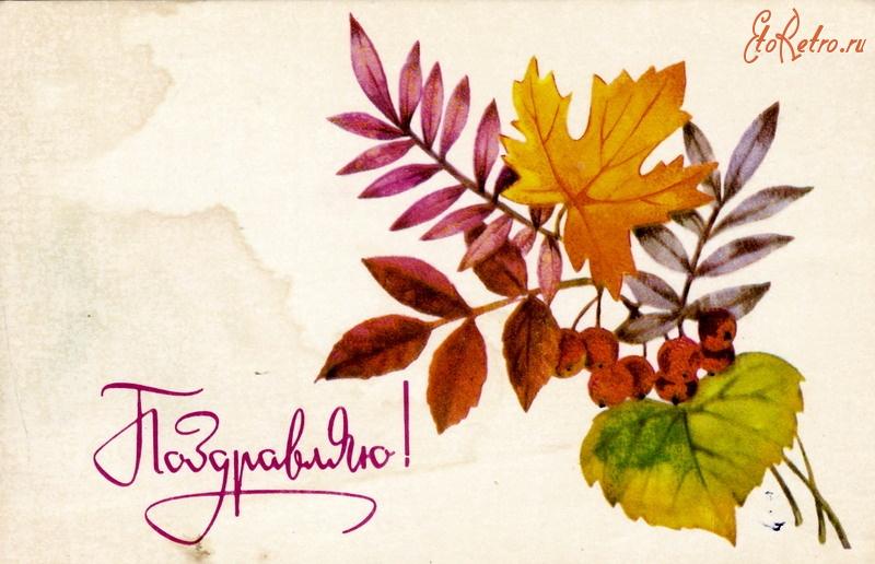 Картинки телефон, открытки с осенними листьями с днем рождения