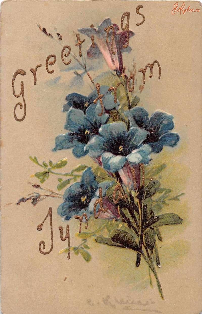 Картинки козлами, открытка привет ретро