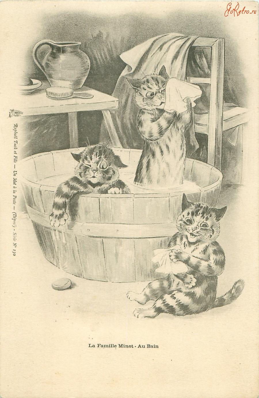 Открытки купание кота, шары днем рождения