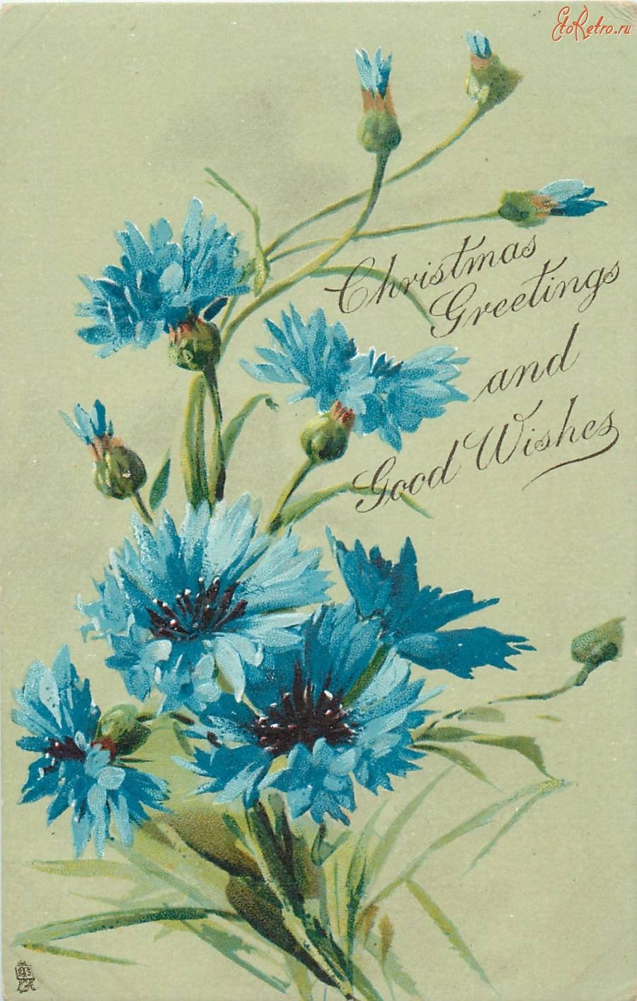 Для, поздравительная открытка василек 2 класс