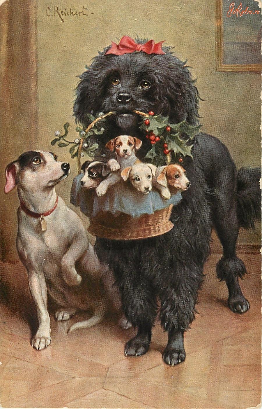 Гифка, открытки с собаками ретро