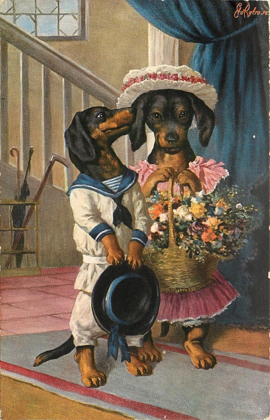 Скелет, открытки с собаками ретро