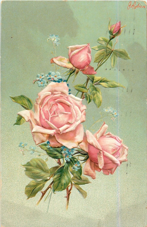 Картинка подруге, ретро картинки розы