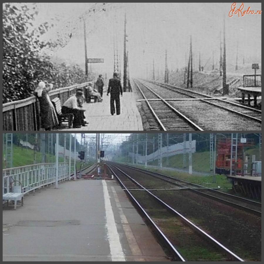 шлюхи московская область станция салтыковская крым